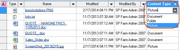 content type-datasheet view-SP2007